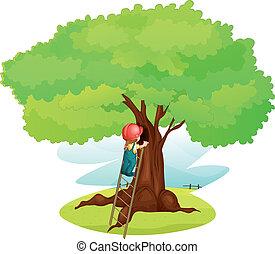 un, niño, y, escalera, debajo, árbol