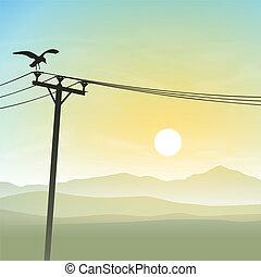 un, pájaro, en, líneas telefónicas