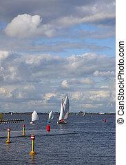 un, pequeño, velero, en, holandés, agua