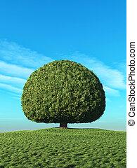 un, perfecto, árbol