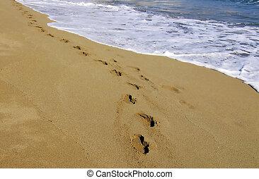 una caminata en la playa