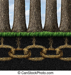 Unbreakable solidarity and teamwork cooperation concept as a group of trees connected underground with strong roots shaped as chain links connected together as a business metaphor for friendship and partnership success.