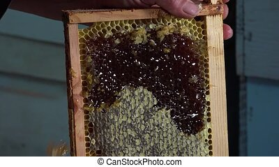 uncapping honey frames - ray release of filled honey prior...
