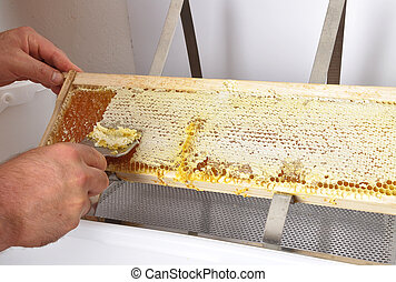 Uncapping of honeycomb at plastic tub