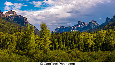 Uncompahgre National Forest near Ouray