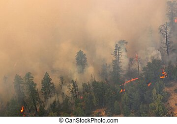 Uncontrolled Fire - Heavy smoke and flames from an ...