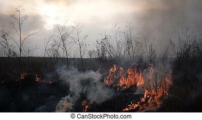 uncontrolled fire in a field