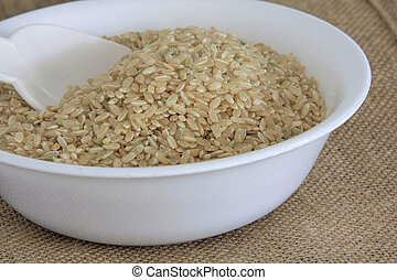 uncooked brown rice in a white bowl