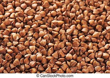 buckwheat background texture