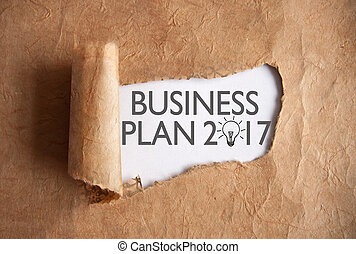 Uncovering a business plan 2017