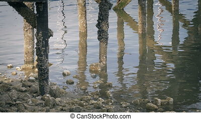 Under Pier With Barnacled Pillars At Sunset - Pier legs in...