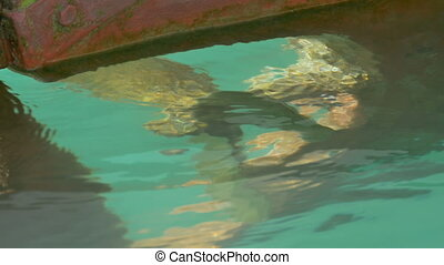 Under Sea Propeller - Under water view of a boat propeller.