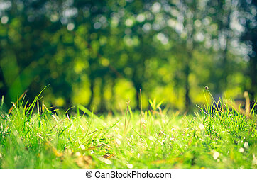 Abstract natural backgrounds