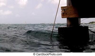 Under the dock Key West Florida