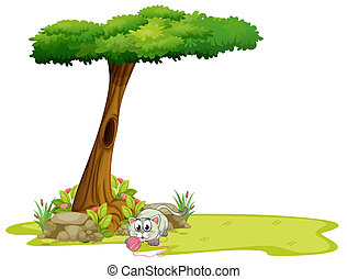 under, träd, leka, katt
