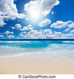 underbar, strand, landskap