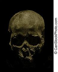 Underexposed Dark Skull - Underexposed photo of dark skull ...