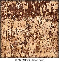 Underside of a birch bark