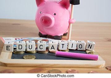 undervisning, omkostninger, begreb