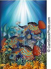 Underwater banner with Mandarin Dragonet fish, vector illustration