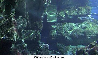 Underwater Concrete Structure