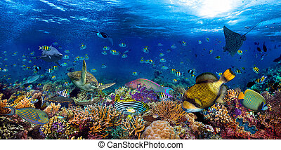underwater coral reef landscape wide 2to1 panorama background in the deep blue ocean with colorful fish sea turtle marine wild life