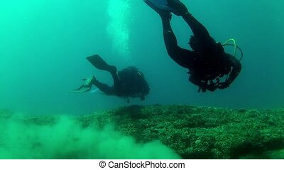 Divers in the water - Underwater Divers in the water HD...