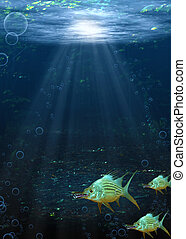 Underwater Fantasy Scene - Underwater scene of a school of...