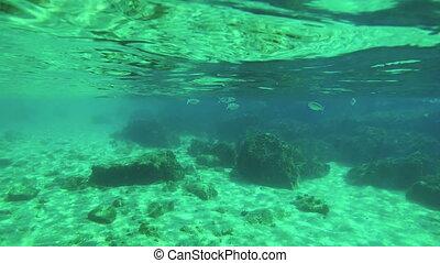 underwater, filmmeter