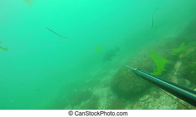 Underwater fisherman on the bottom of the sea, caught a...
