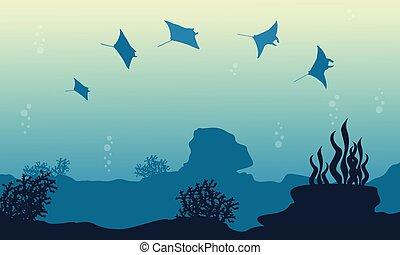Underwater landscape of stingray vector illustration