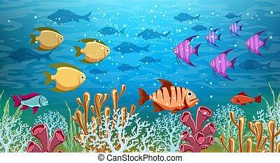 Underwater life panorama - Underwater panorama. Sea under...