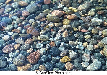 Colourful pebbles, rounded by years of wave action, below the surface of the clear Lake Huron water.
