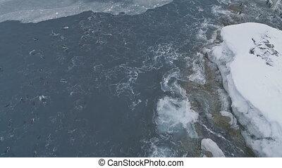Underwater penguins in ocean. Antarctica shot. - Underwater...