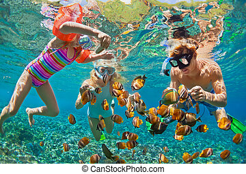 Happy family - father, mother, child in snorkeling mask dive underwater with tropical fishes in coral reef sea pool. Travel lifestyle, water sport adventure, swimming on summer beach holiday with kids