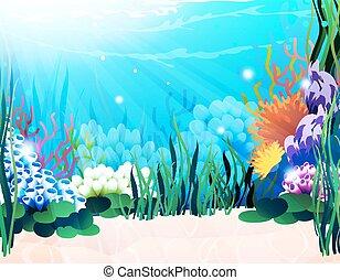 Underwater plants - Underwater landscape with exotic plants...