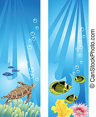Underwater Scene - Background illustrations of tropical ...