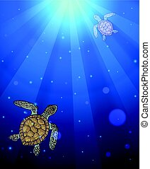 Underwater sea scene with two marine turtles