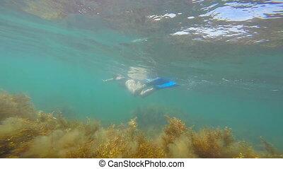 Underwater shot of female snorkeler swimming in water...