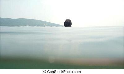 Underwater Shot of Woman Swimming In Sea, Slow Motion, HD