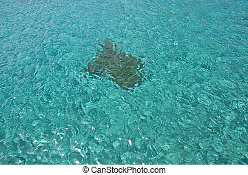 Underwater Stone, Shining blue water background