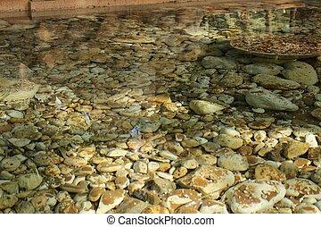 Underwater stones in the garden