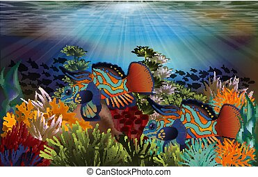 Underwater tropical card with mandarin dragonet fish, vector illustration