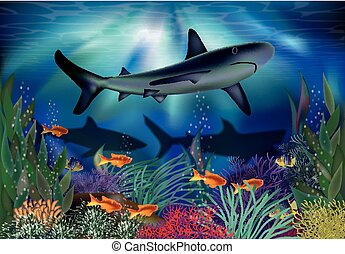 Underwater tropical card with Shark, vector illustration