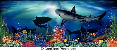 Underwater tropical wallpaper with Shark, vector illustration