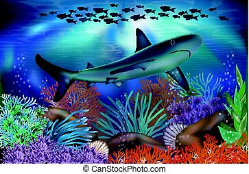 Underwater tropical wallpaper with Shark, vector illustration