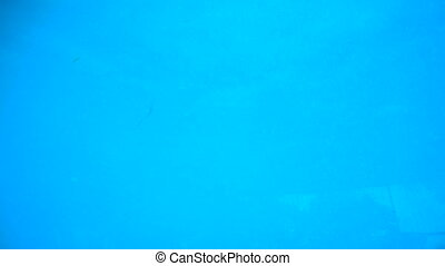Underwater view in sea