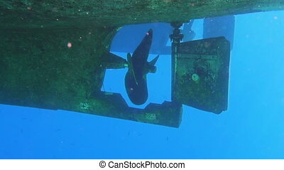Underwater view to yacht rudder and prop, scuba diving...