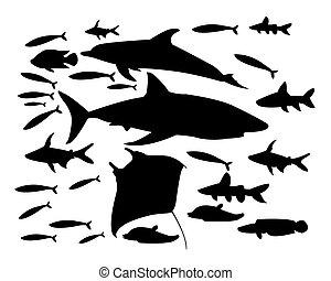 Underwater World Of Fish