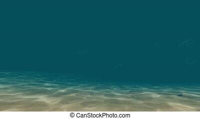 Underwater world with fish